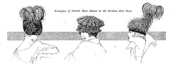 "Image from ""Audubon Couldn't Criticize these Hats."" Review of the birdless hat show in Millinery Trade Review, December 1917."