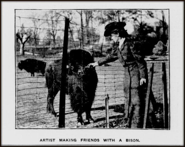 AHH with bison at the Bronx Zoo. New-York Tribune, February 4, 1906.