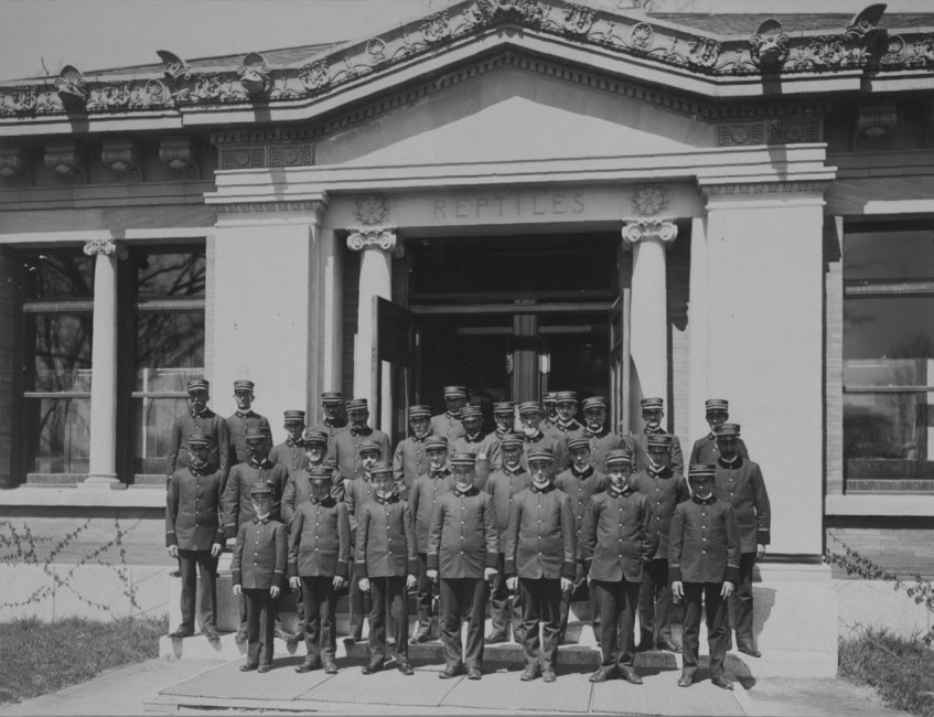Keepers and attendants in front of the Bronx Zoo Reptile House, 1901