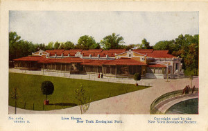 Postcard featuring Bronx Zoo's Lion House, circa 1906. In WCS Archives Collection 2016.
