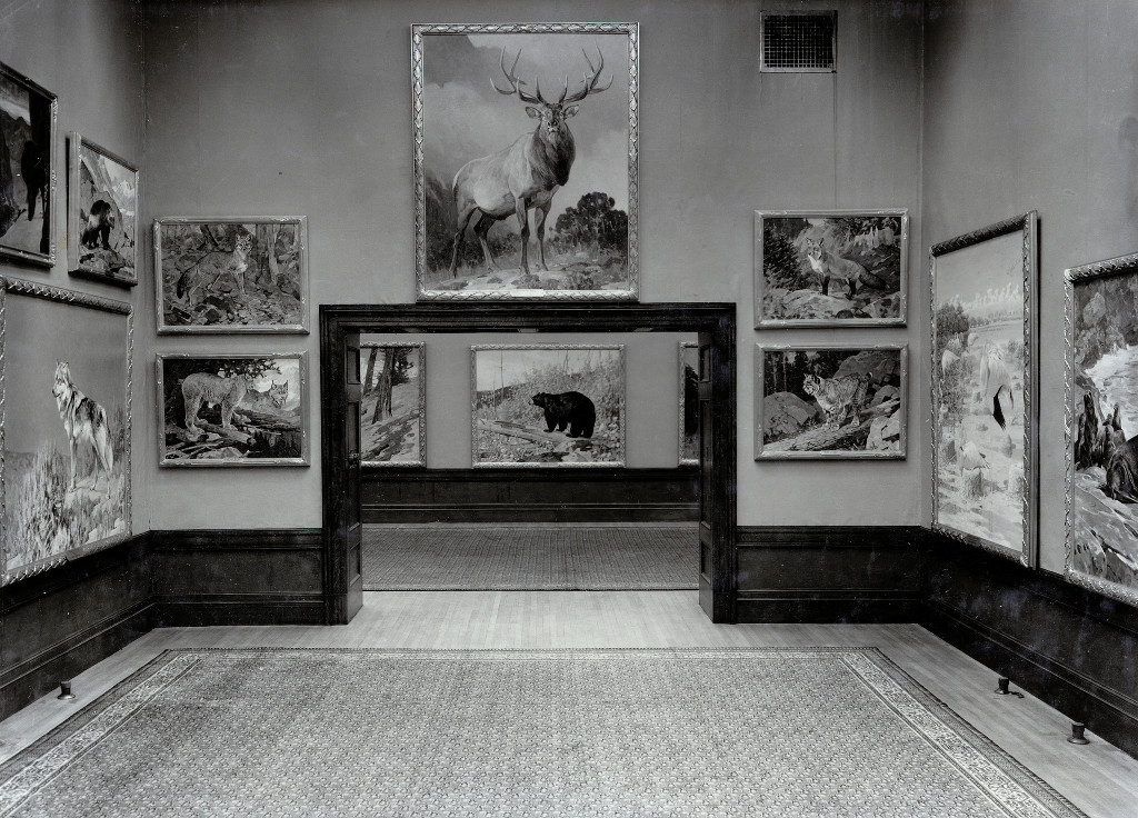 New York Zoological Society art gallery, located in the Bronx Zoo's Administration Building, circa 1920. From WCS Photo Collection.