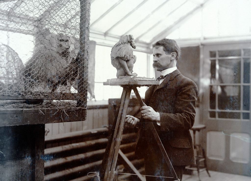 A. P. Proctor sculpting a baboon at the Bronx Zoo, probably 1901. From the WCS Photo Collection.