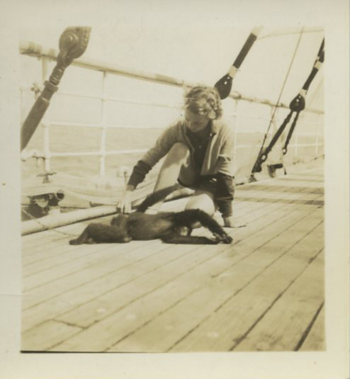 """Janie"", a black spider monkey caught during Hollister's expedition to British Guiana, 1936. Scanned from WCS Archives Collection 2014"