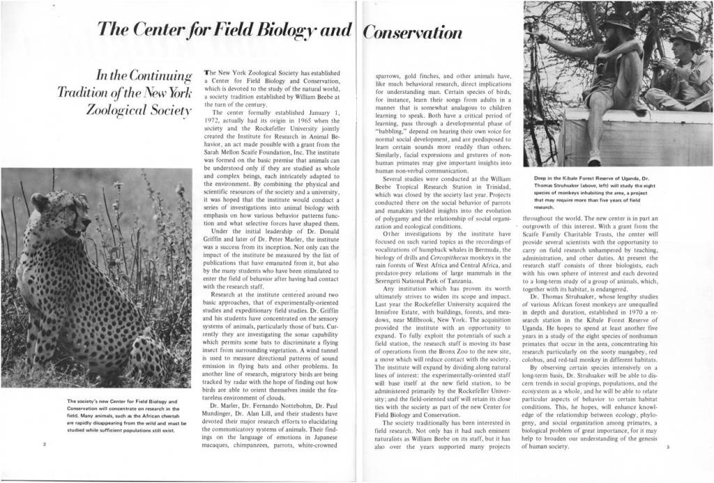 For more on the Center, you can {download} this 1972 Animal Kingdom article, found in the Collection.