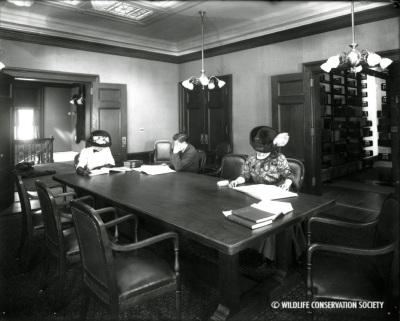 NYZS Library, 1910