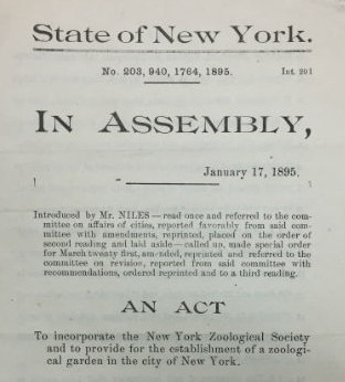 Bill to incorporate the New York Zoological Society, January 17, 1895. WCS Archives Collection 1001