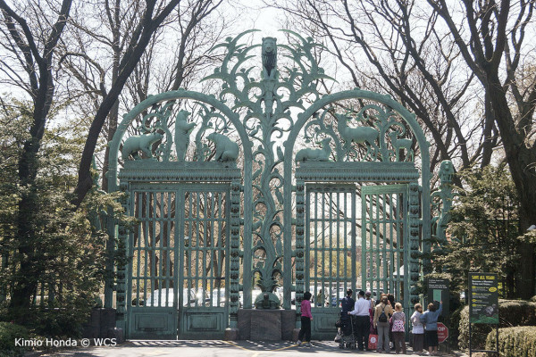 The Rainey Gates sit at the Fordham Road Entrance. Kimio Honda © WCS