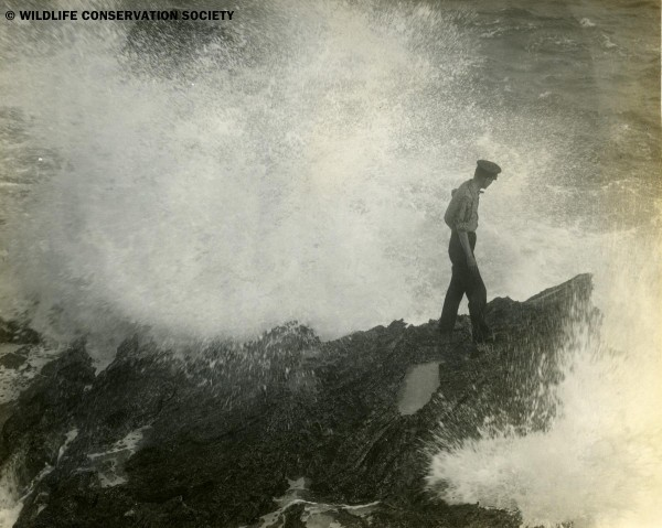 Crew member Von Haelberg in ocean spray along coast, Bermuda, April 17, 1929.