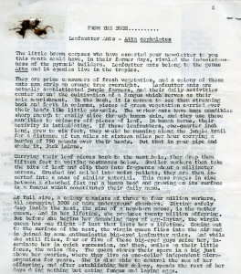Belize Zooletter article on leafcutter ants with ants taped to the page
