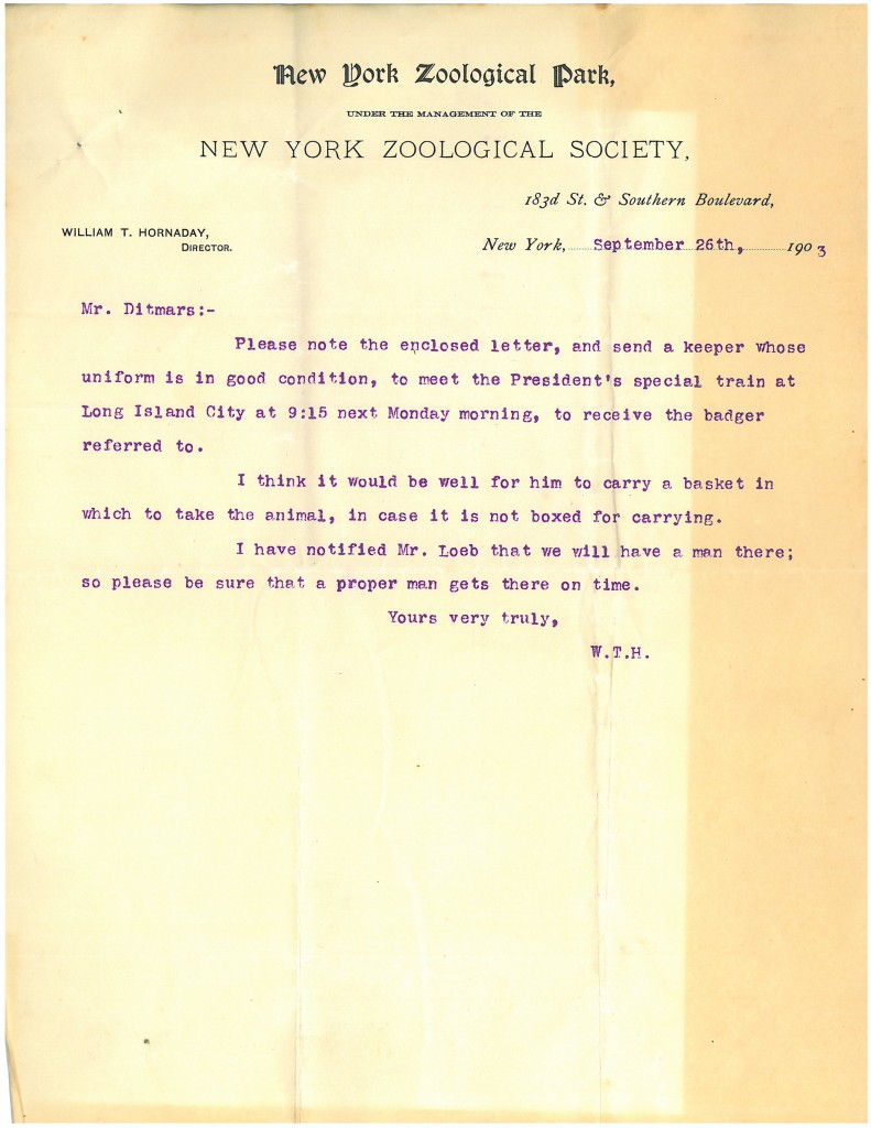 William Hornaday to Raymond Ditmars, September 26, 1903. WCS Archives Collection 1001