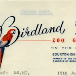 Letterhead-InternationalZoos-002-Birdland