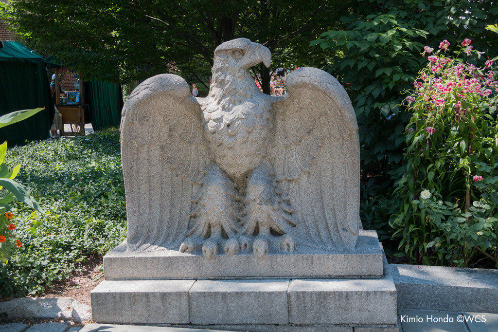 Eagle sculpture in Central Park Zoo courtyard.