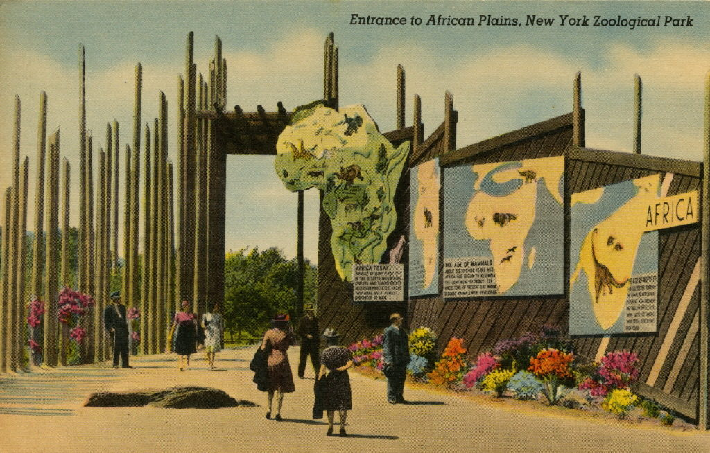 NYZS postcard featuring the entrance to the African Plains exhibit, circa 1940s. WCS Archives Collection 2016