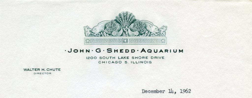John G. Shedd Aquarium, December 1962
