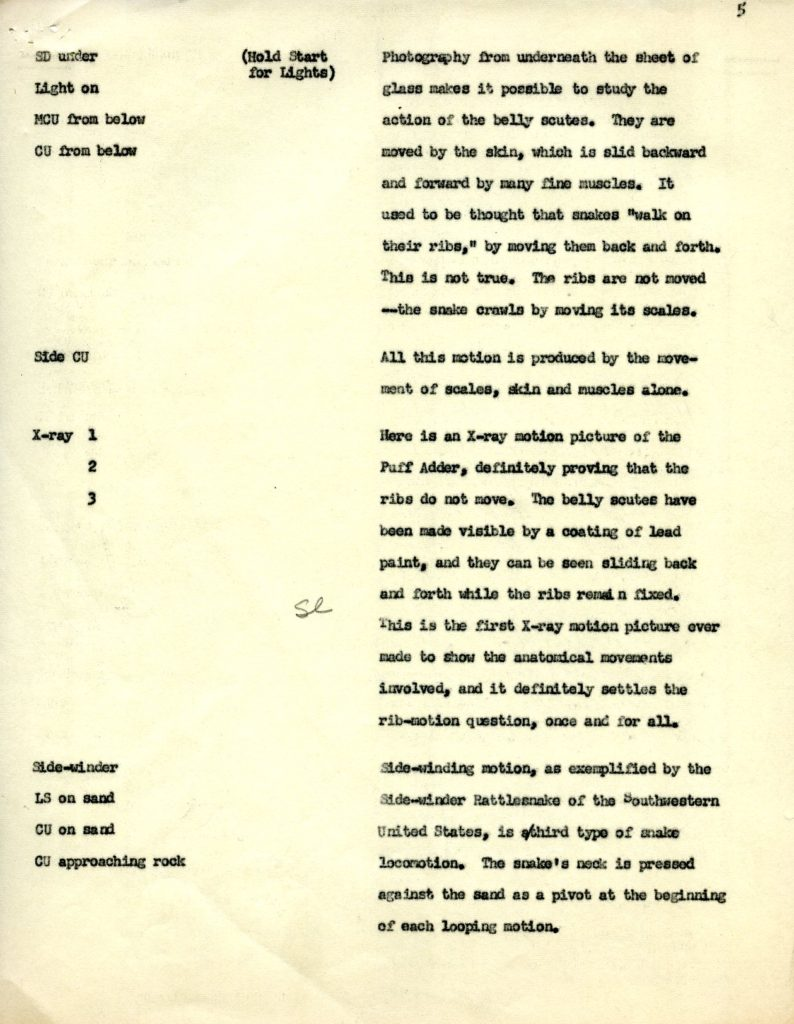"Page 5 from the film script for ""The Locomotion of Snakes,"" 1952. WCS Archives Collection 2008."