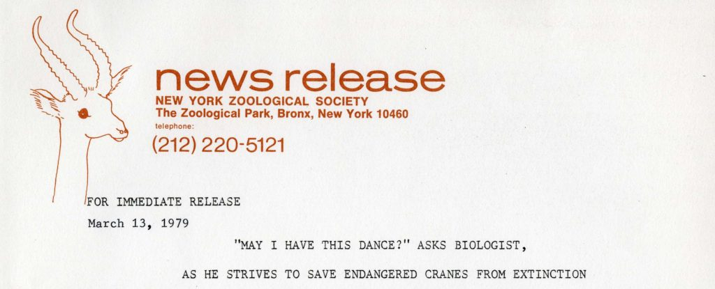 NYZS press release, 1979. Scanned from WCS Archives Collection 2032.