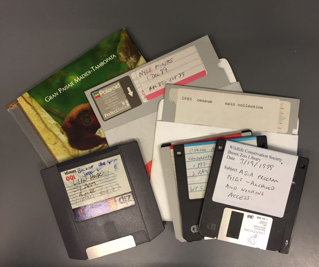 A few of the legacy digital media items from the WCS Archives.