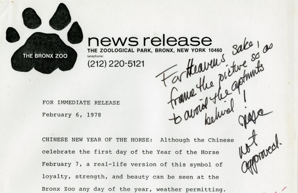 "Correspondence, typed memoranda, and handwritten notes frequently appear in the press release files. This draft of the ""Chinese New Year of the Horse"" press release, accompanies the edited photograph featured below. The annotations here are from General Director, William Conway. Press release February 6, 1978. Scanned from WCS Archives Collection 2032."