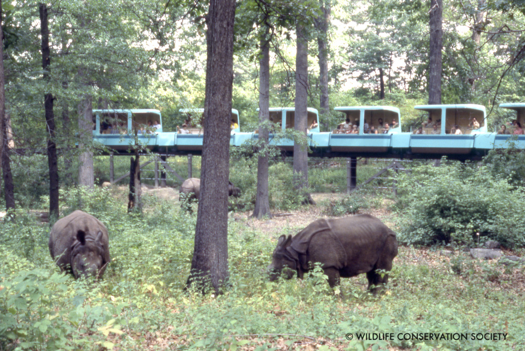 Happy Th To Wild Asia WCS Archives Blog - 17 zoo animals happy see visitors